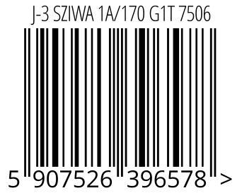 05907526396578 - J-3 SZIWA 1A/170 G1T 7506